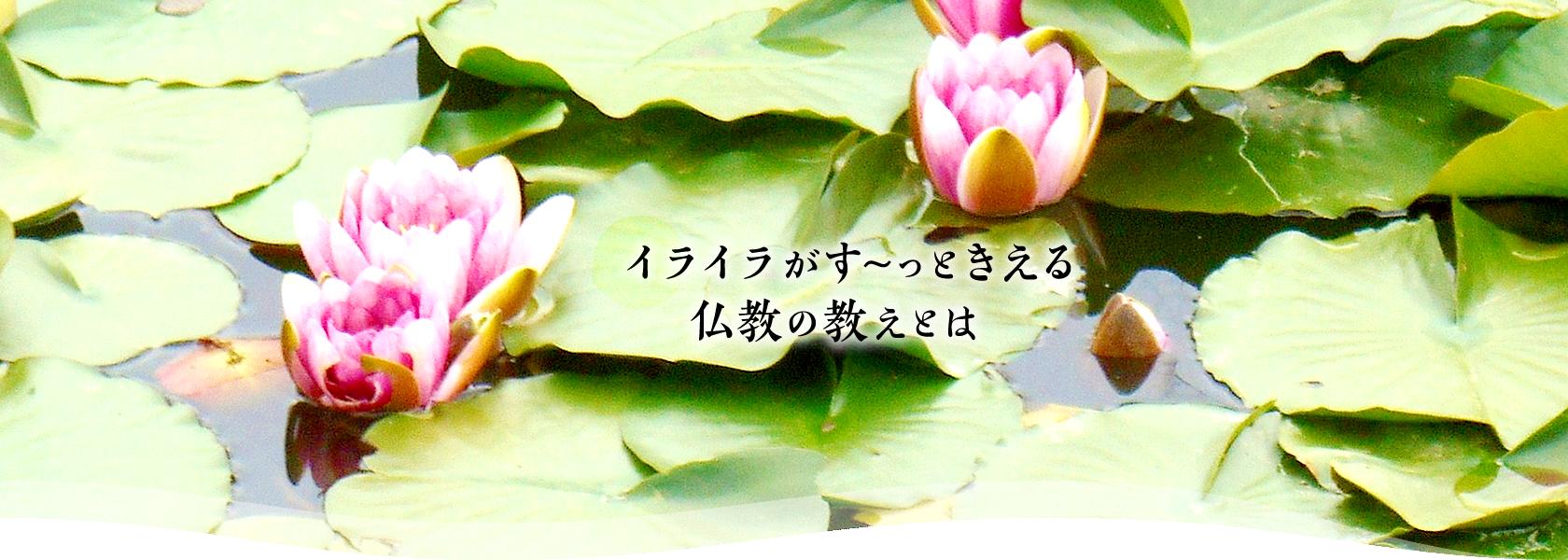 イライラがす~っときえる仏教の教えとは